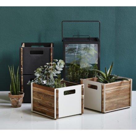 """Aufbewahrungskasten """"Box"""" von Cane-line"""