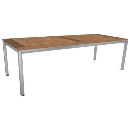 Stern Tischsystem, Gestell Edelstahl Vierkantrohr, Tischplatte Old Teak, Größe: 250x100 cm
